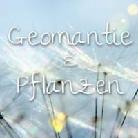 Geomantie & Pflanzen